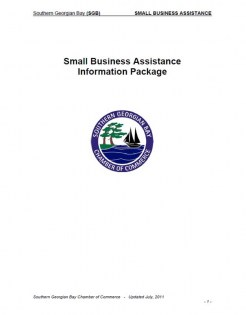 smallbusinessassistanceonli